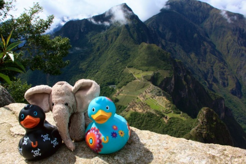 With the family at Huayna Picchu